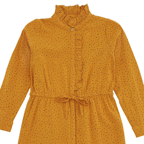 Soft Gallery Electa Dress Inca Gold AOP Trio Dotties (Jurk)-3