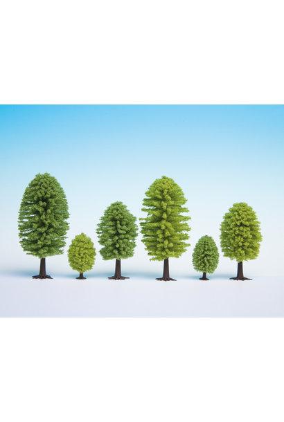 32801 Laubbäume