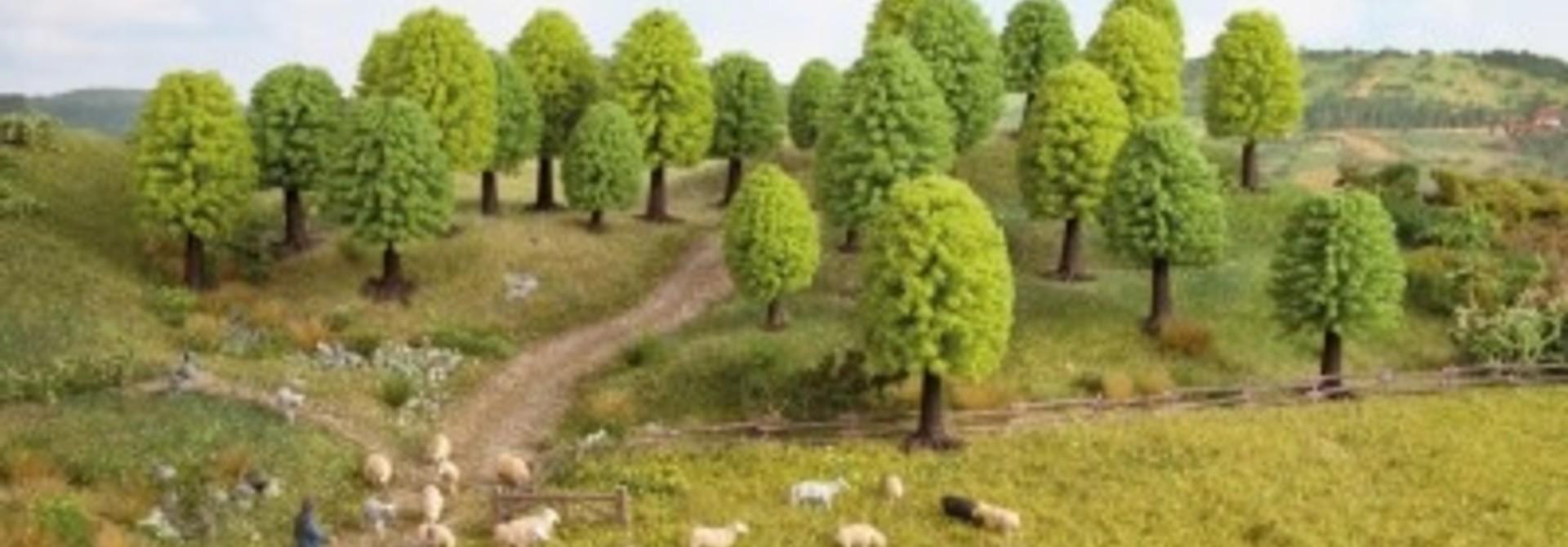 26801 Laubbäume