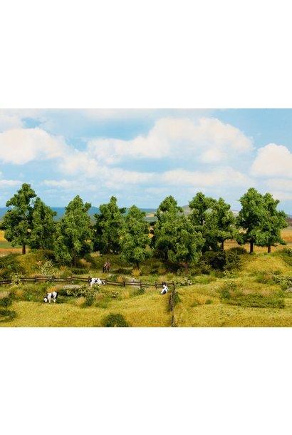 24603 Laubbäume