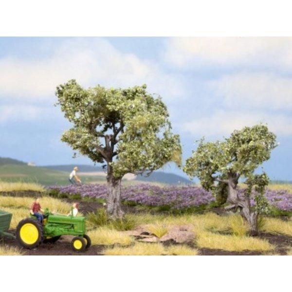 NOCH 21995   Olivenbäume