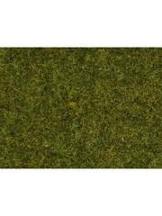 """NOCH 07117 Wild Grass """"wiese"""""""