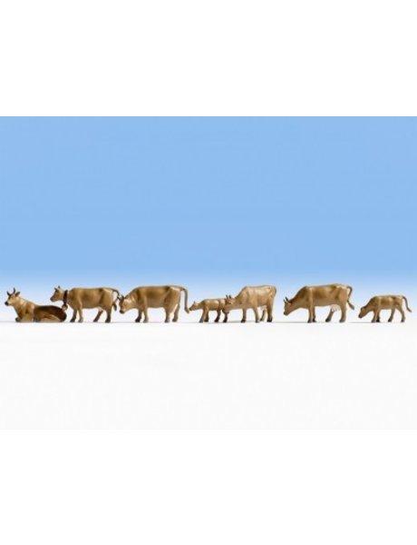 NOCH 15722   Kühe, dunkelbraun