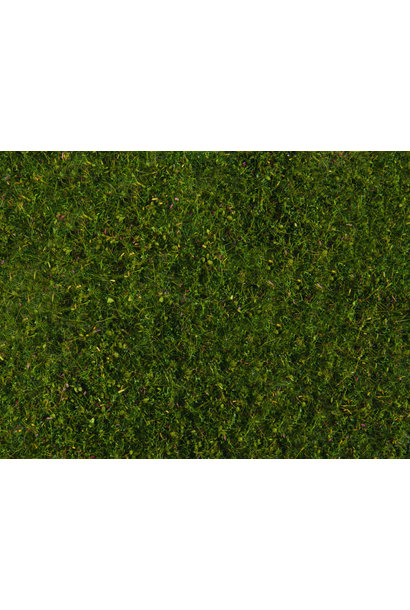 07291 Wiesen-Foliage