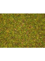 NOCH 08155 Streugras Blumenwiese