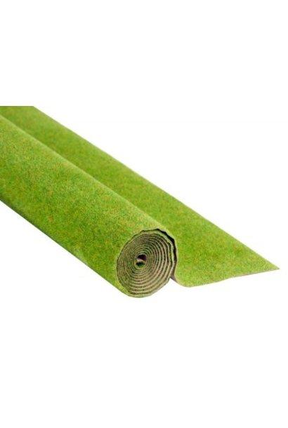00010  Grasmatte Frühlingswiese