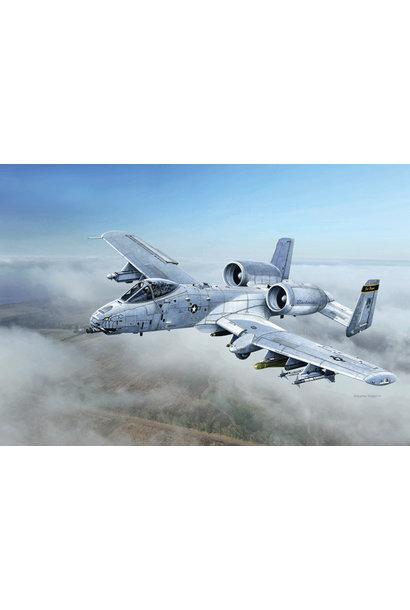 """2725 1:48 A-10C """"Blacksnakes"""""""