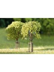 Auhagen 70950 Junge Bäume