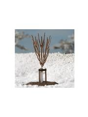 Auhagen 70951 Junge Bäume Winter