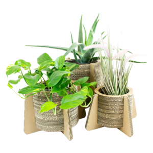 KarTent Three Flower Pots