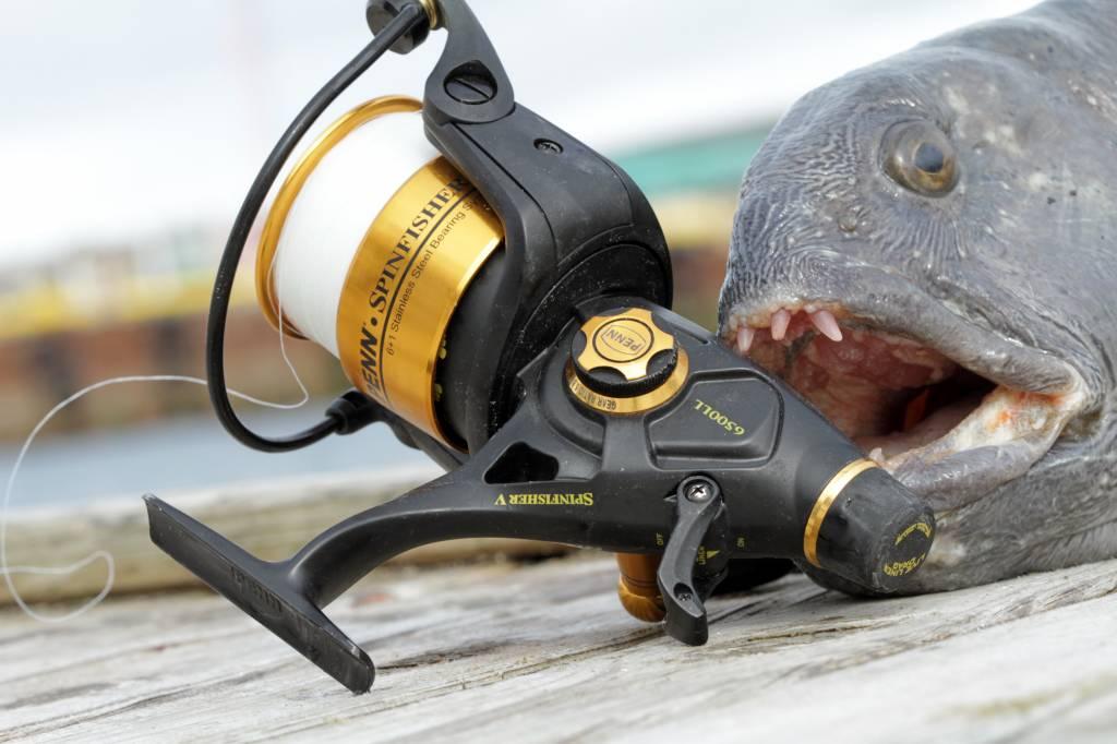 Penn Hengelsport Penn Spinfisher V LiveLiner Baitrunner