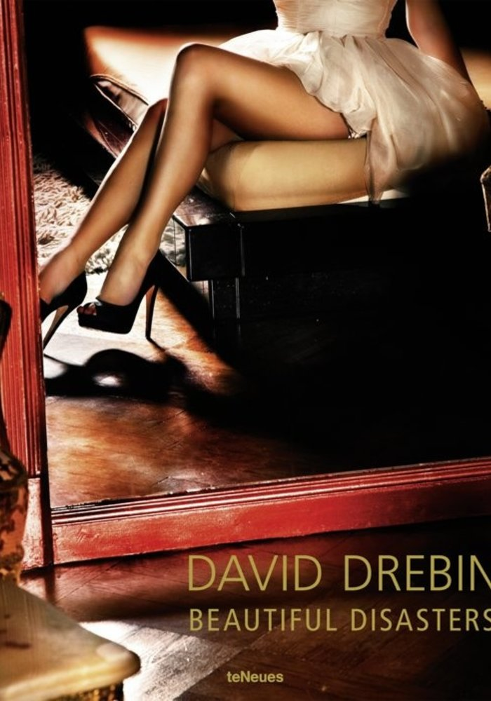 David Drebin - Beautiful Disasters