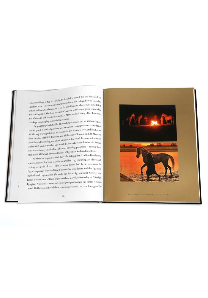 Book - Arabian Horses - The Ultimate Collection