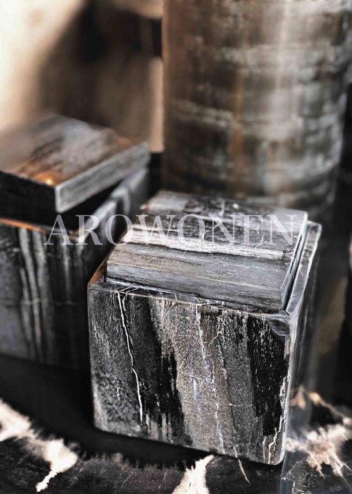 Box - Petrified wood
