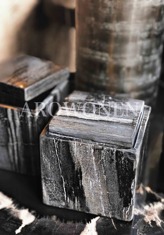 Box  - Versteend hout