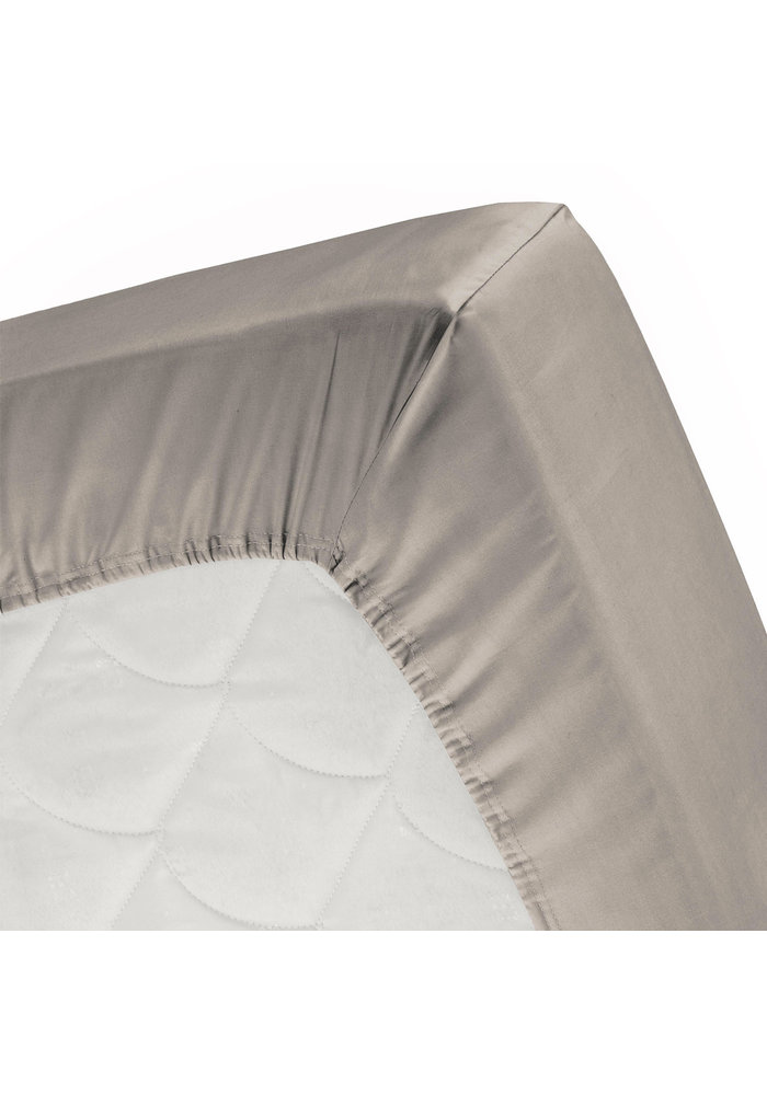 Taupe Softy - Fitted sheet