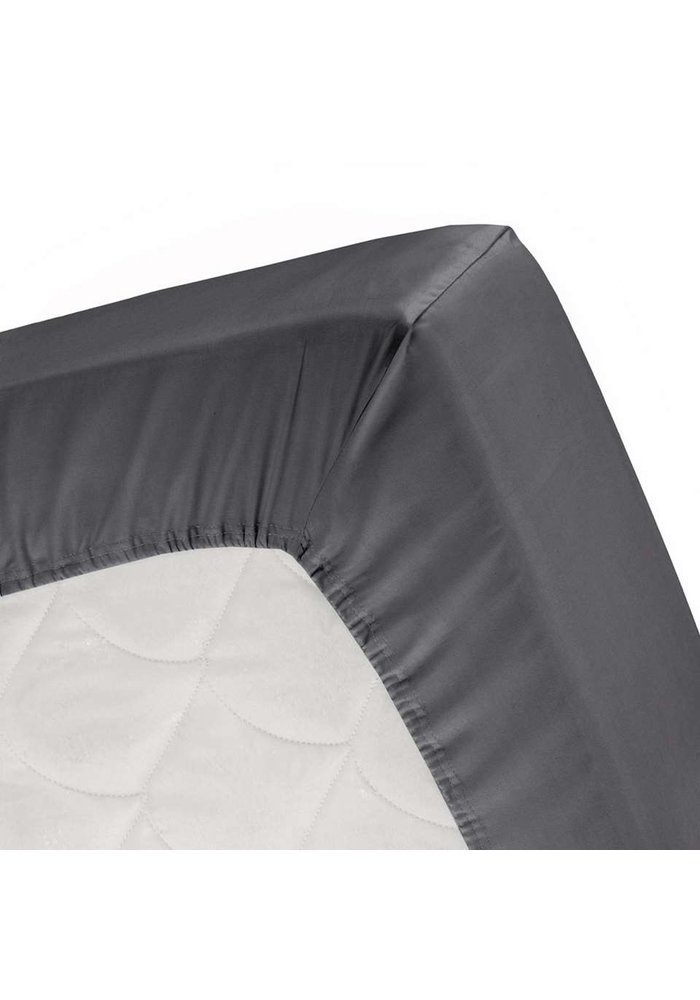 Anthracite Softy - Fitted sheet