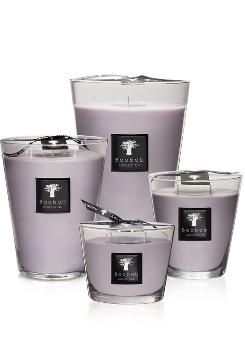 Baobab Candle - ALL SEASONS - WHITE RHINO
