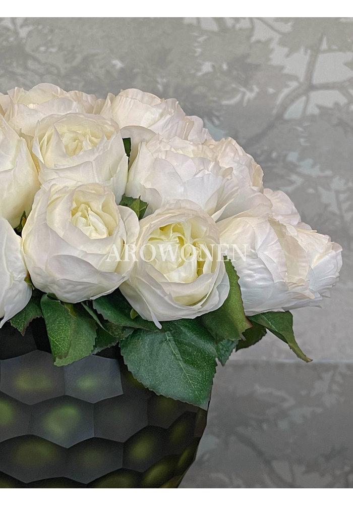 Rose - Venetia - White