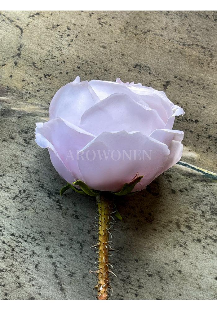 Peony Rose - Pandora - Soft pink 39cm