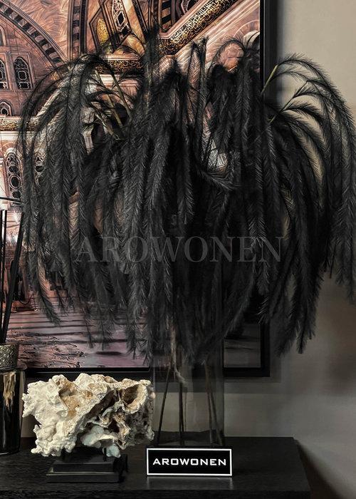 Decoratie Tak - Miami Pluim - Zwart