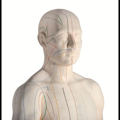 Akupunkturzubehör