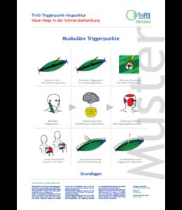 Poster Triggerpunkt-Akupunktur Grundlagen