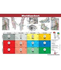Lernkarte Akupunktur Meridianchart