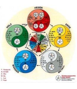 Lernkarte Akupunktur Energie Taschenkarte
