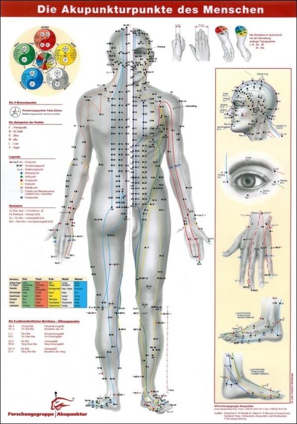 Akupunkturnadeln für die Körperakupunktur