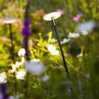 in-lite SWAY en SWAY LOW; Less Is More in je tuin