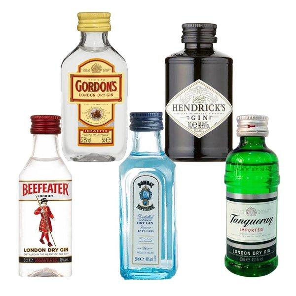 Gin Fling Gin Tasting Set - Classics (5 x 5cl)