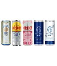 Gin Fling Gin en Tonic premix assorti pakket (5 x 250ml)