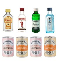 Gin Fling Gin and Tonic Tasting Pack - Citrus