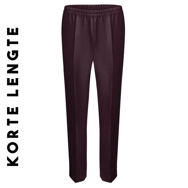 Pantalon Elastiek: Aubergine