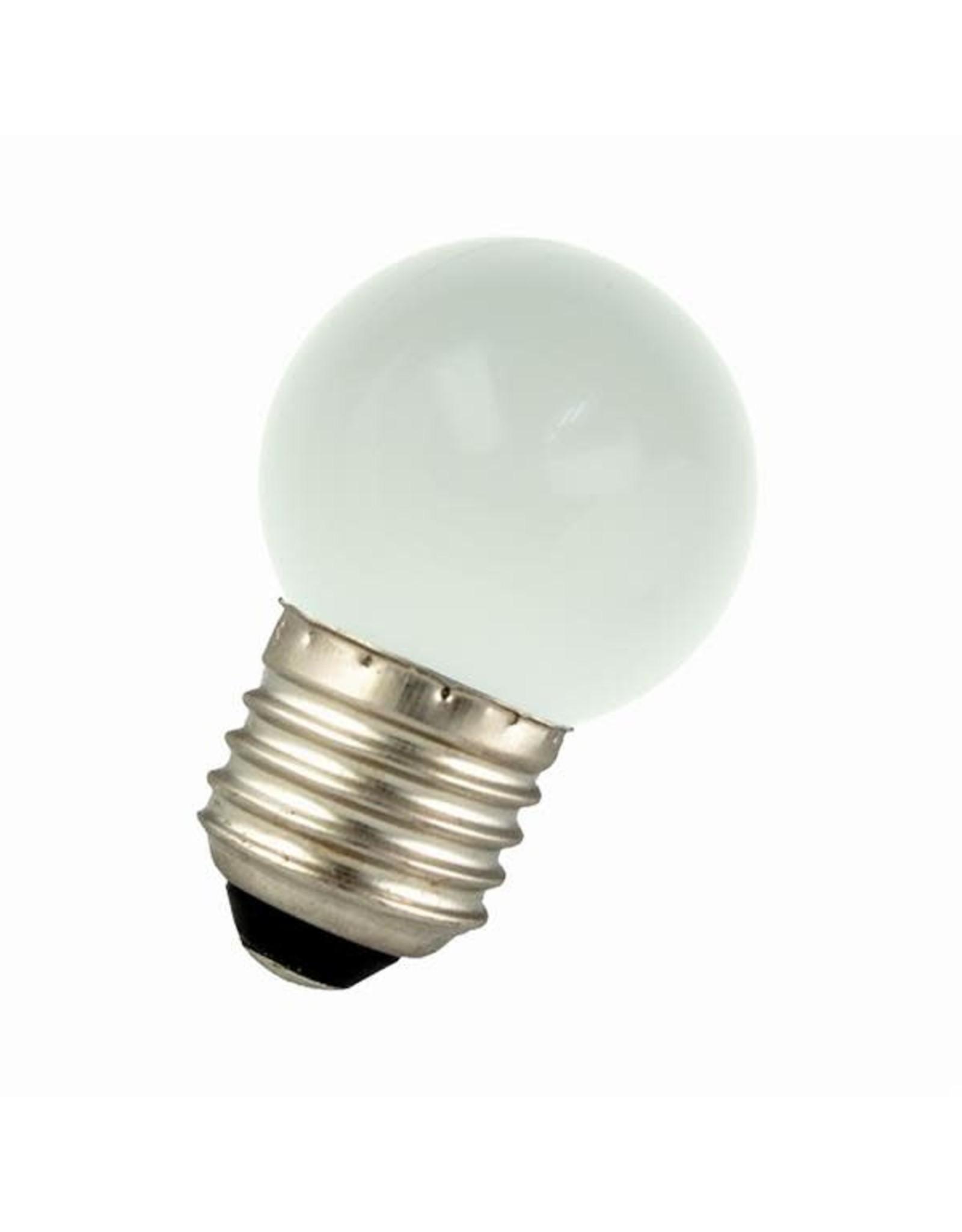 bailey lichtjes