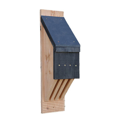 Vleermuiskasten voor een vleermuis