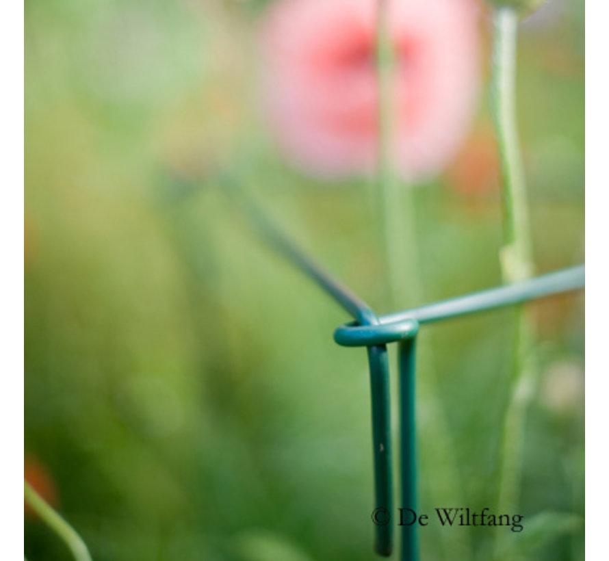 Plantsteunen Engels - 100 cm - 6 Stuks
