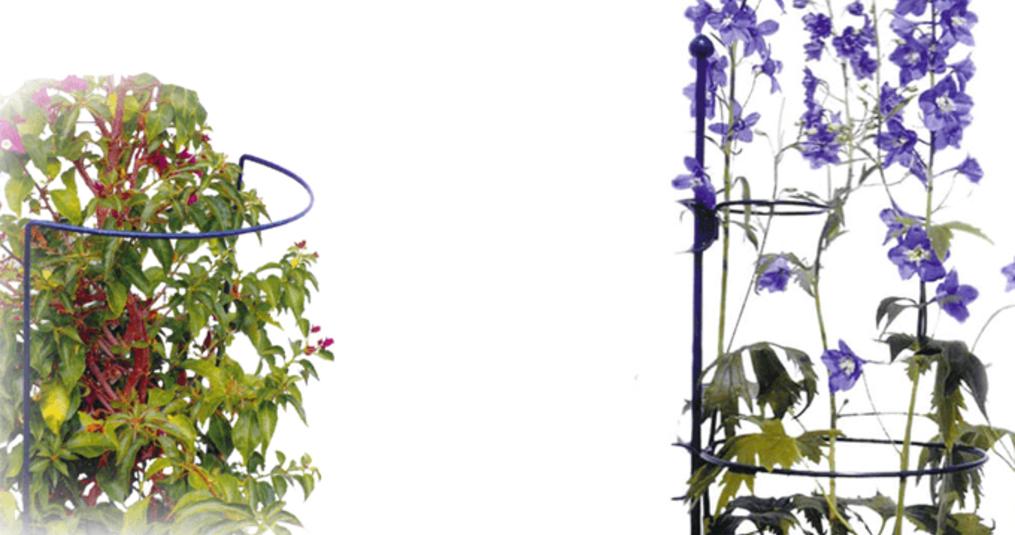 5 Tips voor het gebruik van een plantensteun