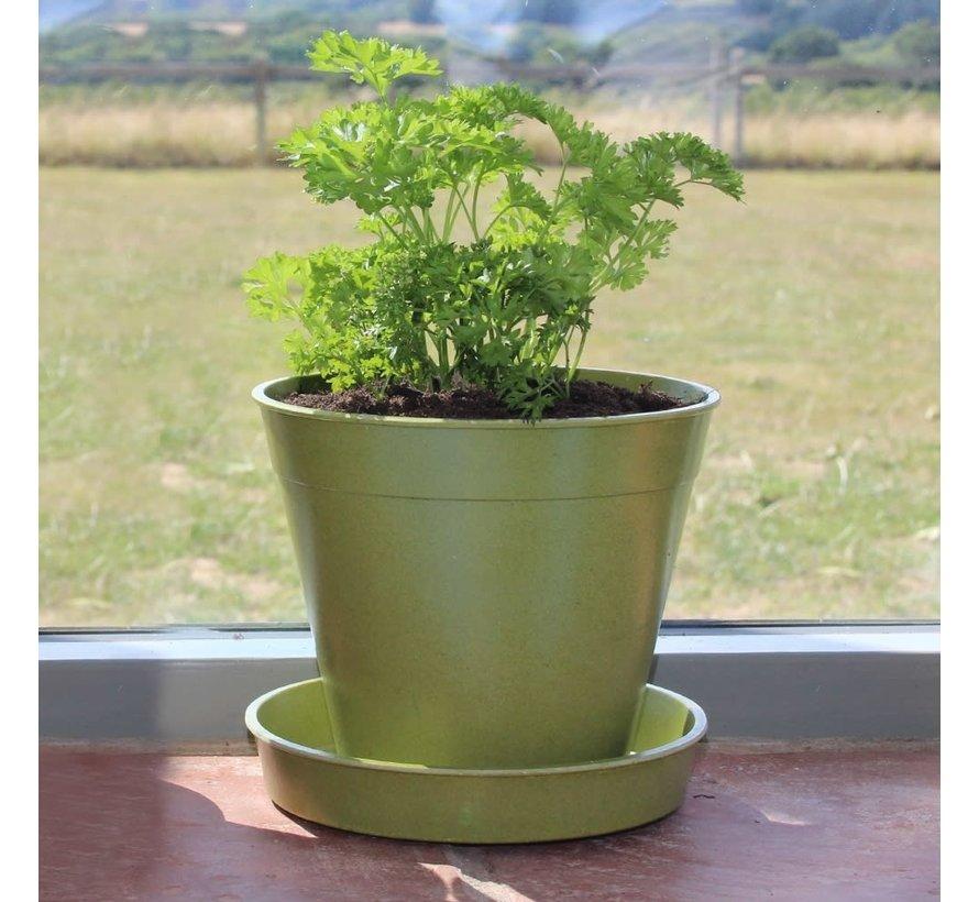 Bloempot Bamboe schotel - Groot - 12,5 cm