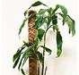 Kokosstok - 110 cm - ø 7 cm