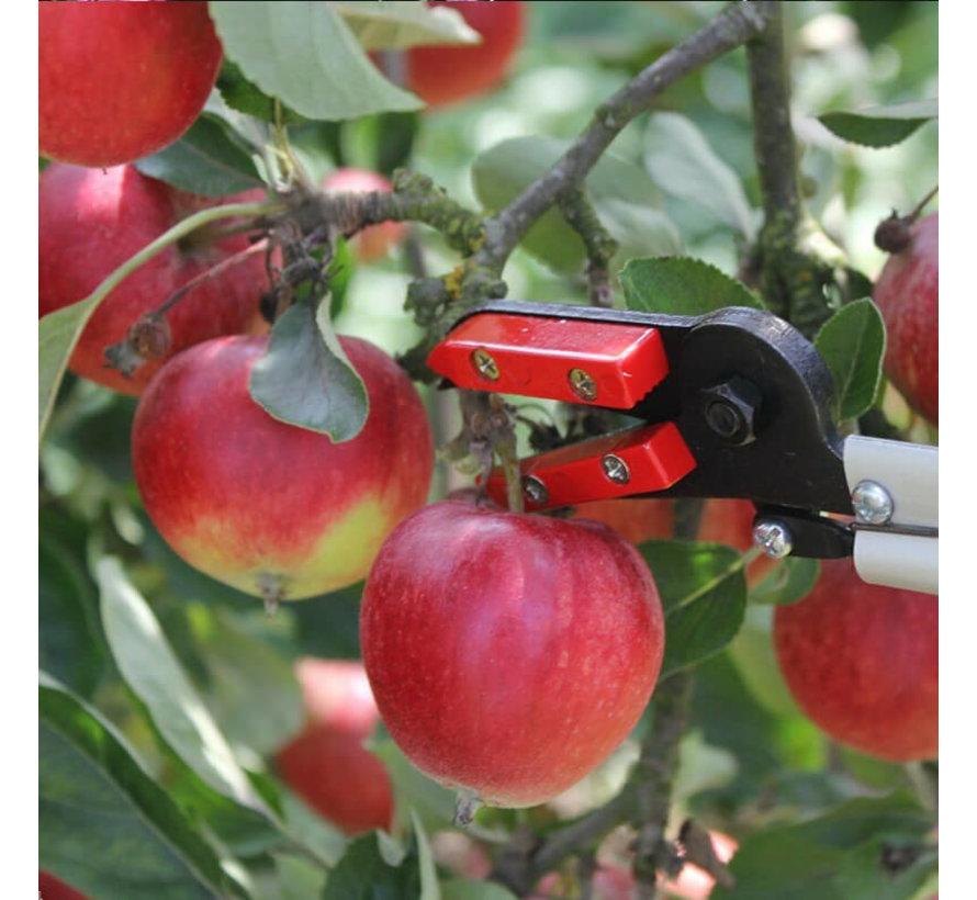 Rozen-fruit Plukschaar - 65 cm / 150 cm