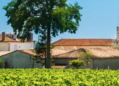 Château Potensac