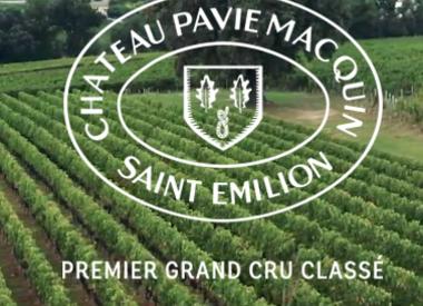 Château Pavie-Macquin