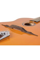 Richwood Richwood RM-70-NT Hot Club jazz guitar