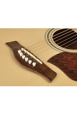 Richwood Richwood Artist series RD-17 Dreadnought Solid Top