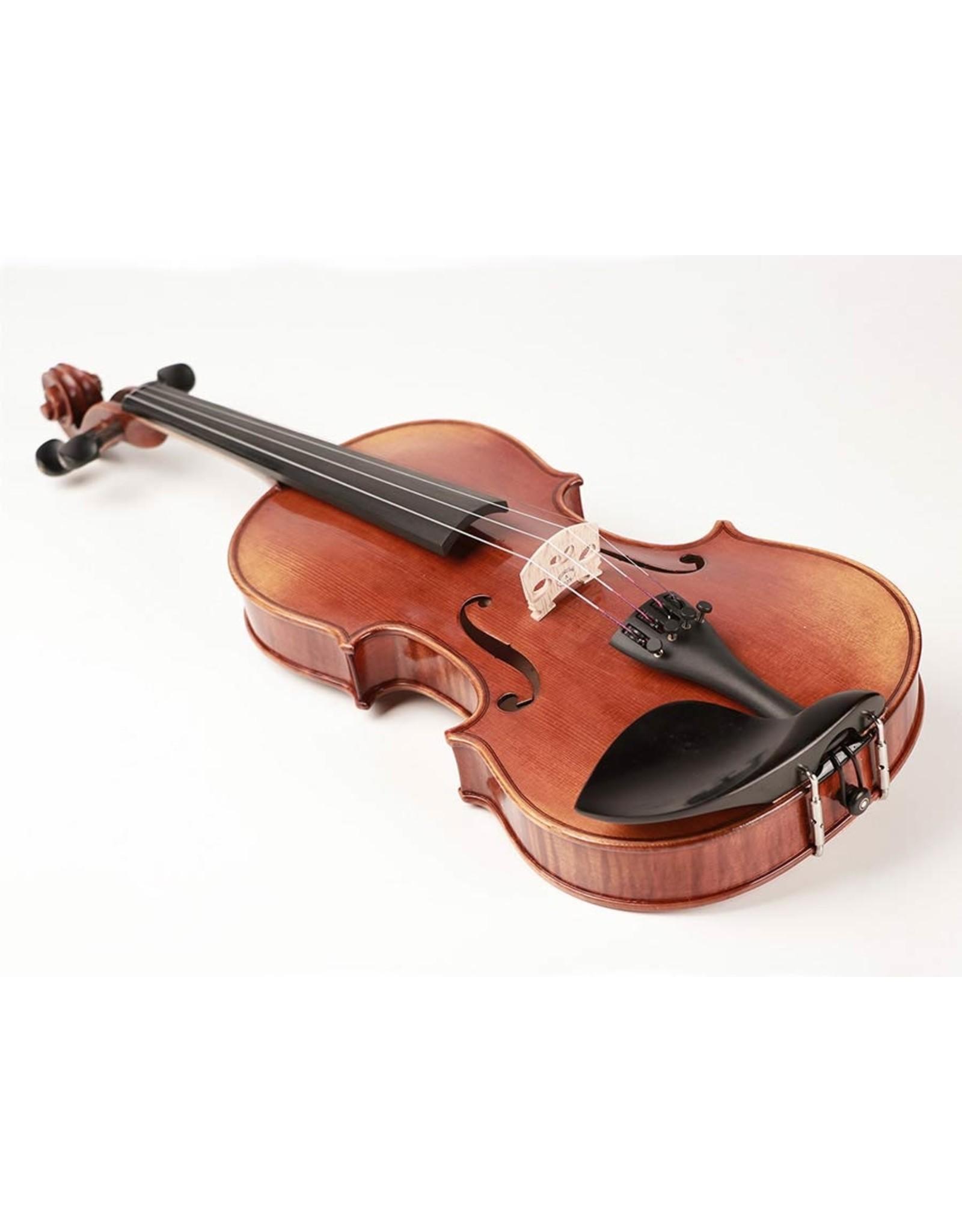 Rudolph 4/4 viool incl. strijkstok, koffer en hars