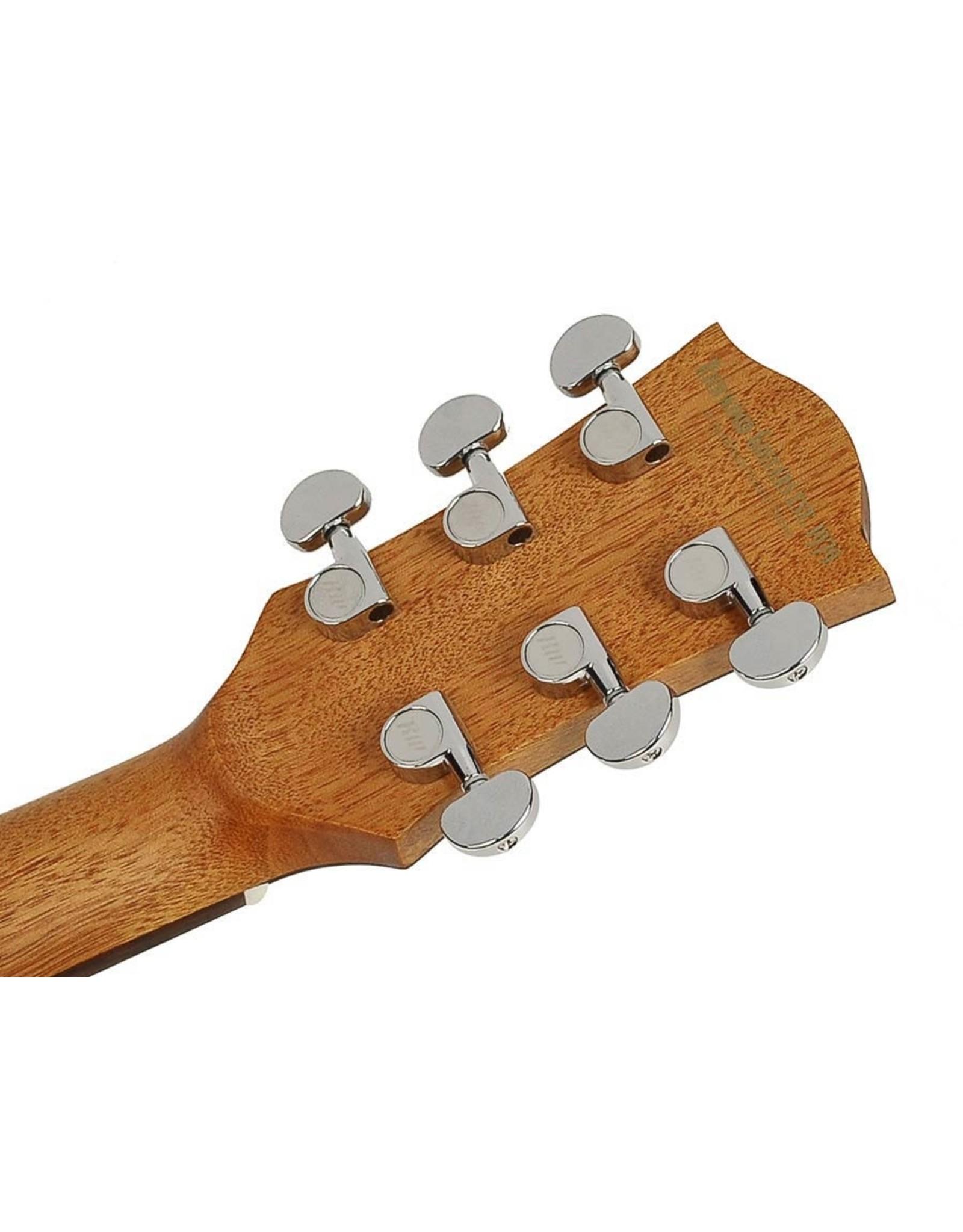 Richwood Richwood B-20 Bariton gitaar