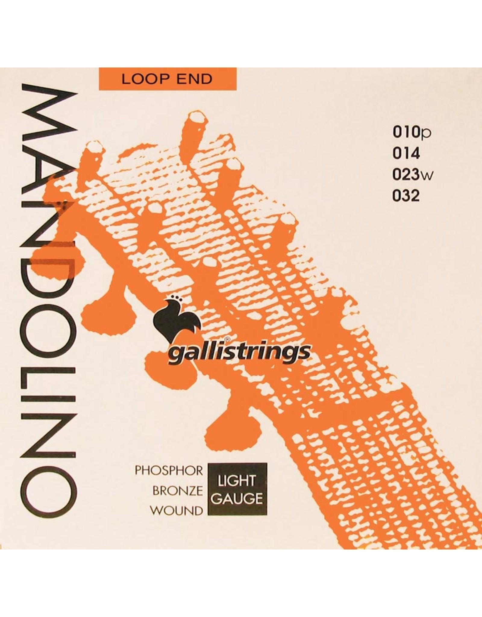 Galli Galli Mandoline snaren Phosphor Bronze G-1430
