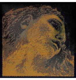 pirastro Pirastro Evah Pirrazzi Gold viool E-snaar